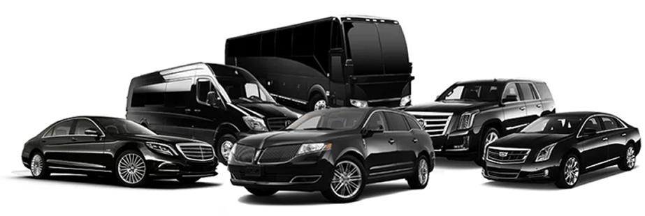 memphis limousine and party bus service Limoservice.htm #12